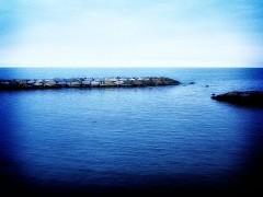 Molo Blu