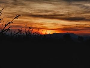 Sunset #19