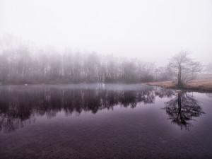 Morning Fog On Lake Beinette