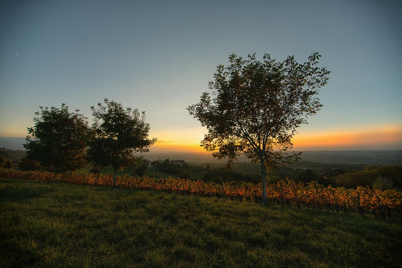 Bricco del Cucù (Sunset)