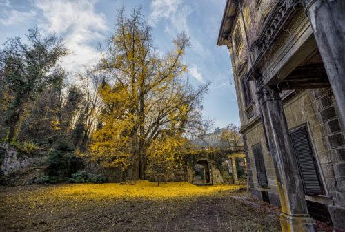 Villa dell'oracolo #01