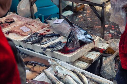 Mercato del Pesce #02