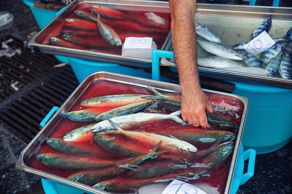 Mercato del Pesce #13