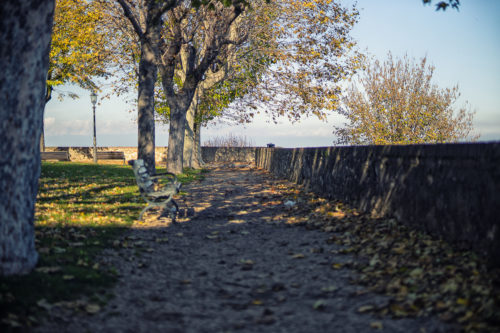 Belvedere/Scarti #03