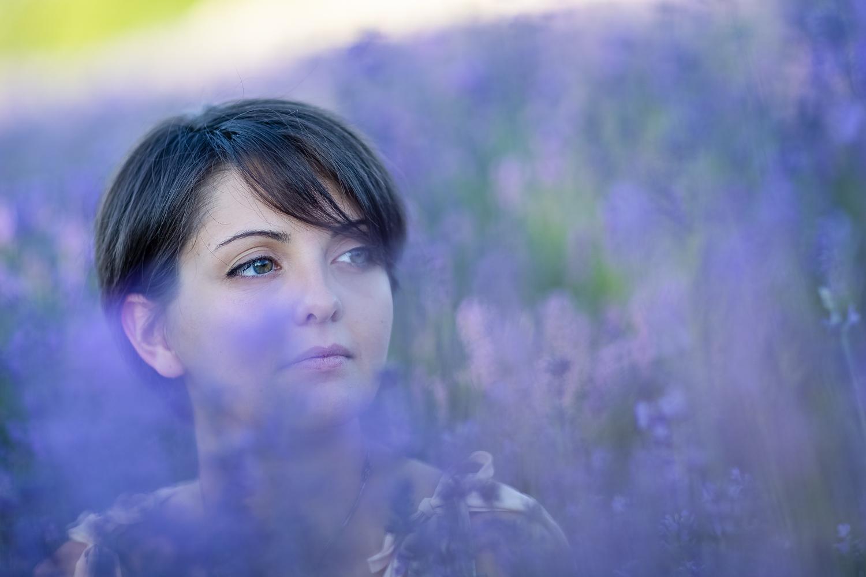 Sweet Lavender #01
