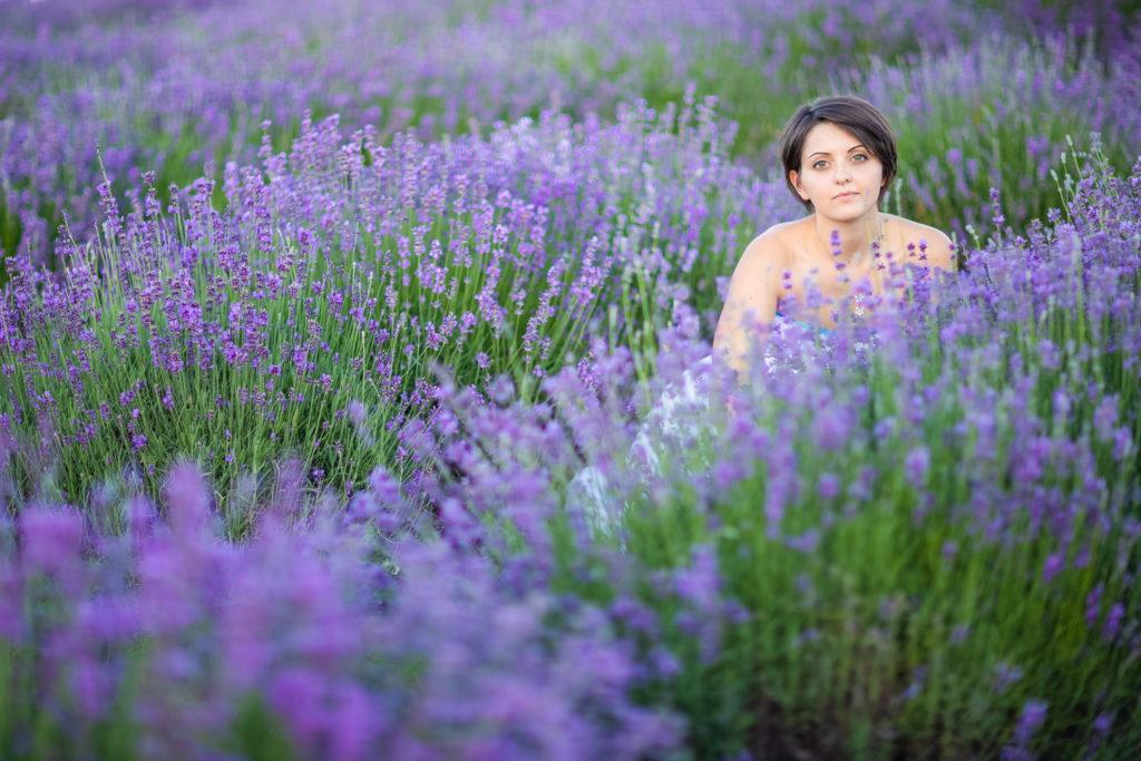 Sweet Lavender #03