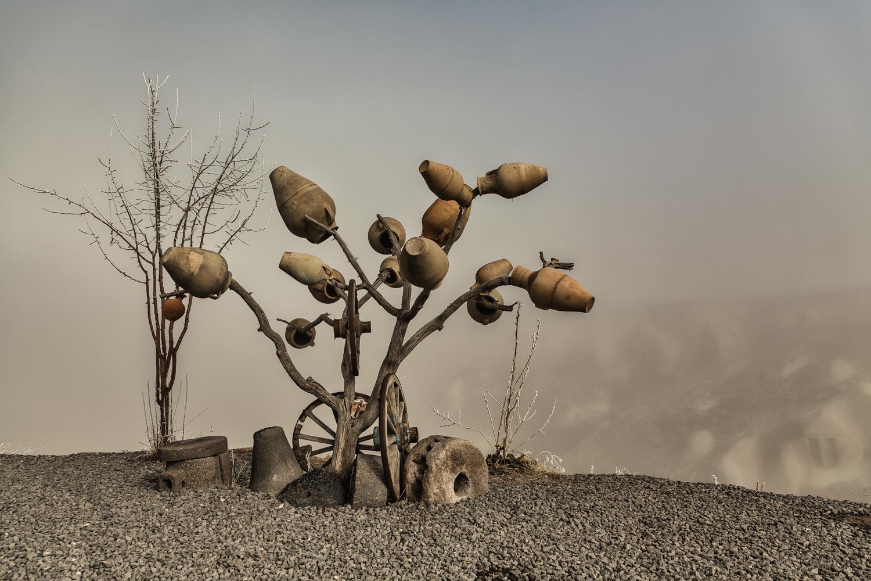 L'albero delle anfore