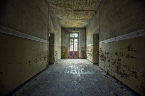 Asylum of R. /41